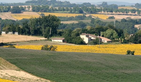notre maison parmi les champs